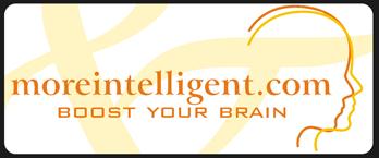 MoreIntelligent.com